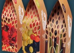 portfolio_packaging